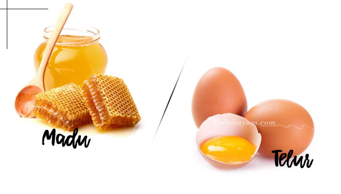 Manfaat Telur Plus Madu Untuk Ayam Bangkok
