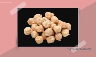 5 Manfaat Kacang Arab Untuk Ayam Aduan